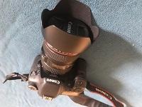 Canon 2924